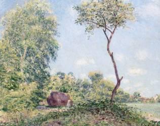 Printemps.Trembles et acacias (Sisley Alfred) - Muzeo.com