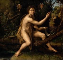 Saint Jean-Baptiste dans le désert désignant la croix de la Passion (Raphaël) - Muzeo.com