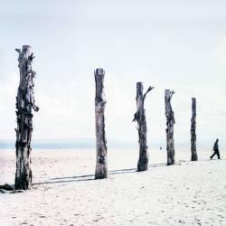4- ARABE QUI MARCHE (Cimier Yoann) - Muzeo.com