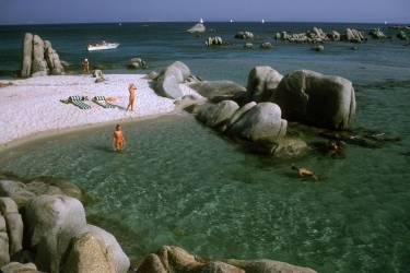 Island Paradise (Aarons Slim) - Muzeo.com