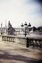 Jardin des Tuileries, côté Jeu de Paume, vue de la place de la Concorde. (Siran Jerome) - Muzeo.com