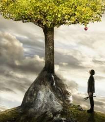 Jeune homme d'affaires levant les yeux vers une pomme dans l'arbre (Anderson Colin) - Muzeo.com