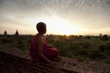 Young Buddhist monk sitting atop temple at sunset (Stulberg Scott) - Muzeo.com