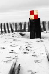 Le petit train – Cap Ferret (Lacène Chrystèle) - Muzeo.com