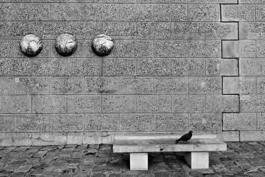 Banc pigeon ParisNR (Jérome Prince) - Muzeo.com