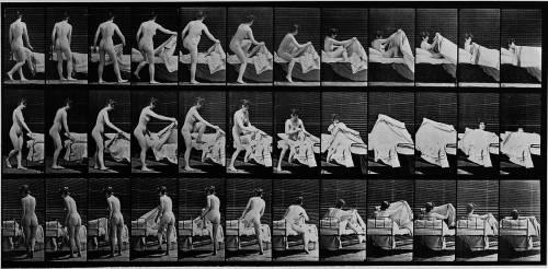 Album sur la décomposition du mouvement: femme nue se couchant (Muybridge Eadweard) - Muzeo.com
