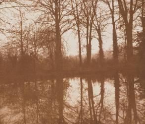 Reflections (Talbot, William Henry Fox) - Muzeo.com