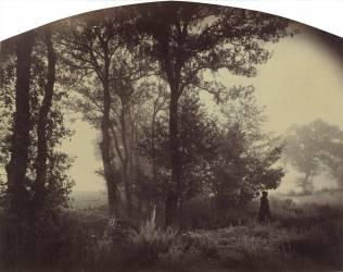 Lisière de forêt avec à droite le peintre Ravier en houppelande (Thiollier Félix) - Muzeo.com
