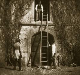 The ladder (William Henry Fox Talbot) - Muzeo.com