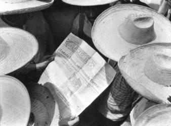Campesinos reading El Machete, Mexico, 1929 (Tina Modotti) - Muzeo.com