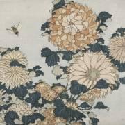 Chrysanthemums (Hokusai) - Muzeo.com