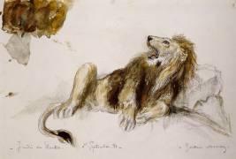 Etude de lion (Gustave Moreau) - Muzeo.com