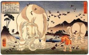 Thaishun with elephants (Utagawa Kuniyoshi) - Muzeo.com