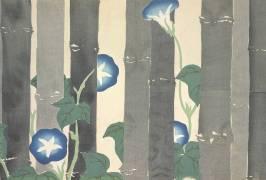 Asagao (Kamisaka Sekka) - Muzeo.com