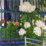 Geraniums (Koloman Moser) - Muzeo.com