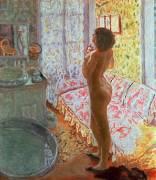 Nude in Backlighting (Pierre Bonnard) - Muzeo.com