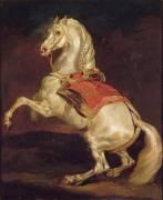 Cheval cabré dit Tamerlan (Théodore Géricault) - Muzeo.com