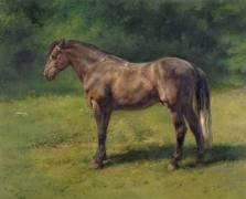 Etude de cheval gris au vert (Rosa Bonheur) - Muzeo.com