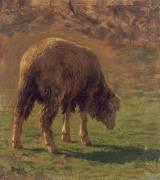 Mouton paissant (Rosa Bonheur) - Muzeo.com