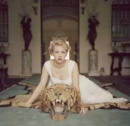 Beauty And The Beast (Aarons Slim) - Muzeo.com