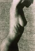 Torso of Nude Woman (Ewan Fraser) - Muzeo.com