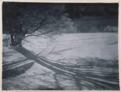Bois sous la neige, étude d'ombres (Wistreich-Weill Bronia) - Muzeo.com