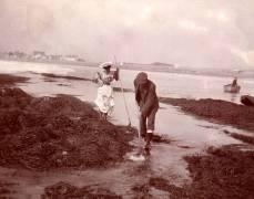 Tourists Shrimping, c.1890 (anonyme) - Muzeo.com