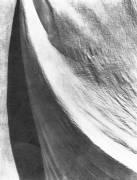 Cloth, Mexico (Tina Modotti) - Muzeo.com